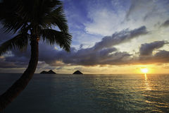 Pacific sunrise in hawaii Stock Images