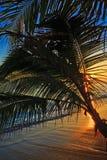 Pacific sunrise at Lanikai beach in Hawaii Royalty Free Stock Photos