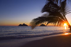 Pacific sunrise at lanikai beach, Hawaii. With the sun rising over the Mokulua islands on the windward side of Oahu Stock Photography