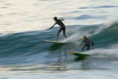 Pacific Surfer. Windansea beach, SAN DIEGO, ca blurred for slow motion effect Royalty Free Stock Photo