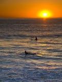 Pacific Surfer Stock Photo