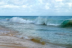 Pacific waves. Waves of the Pacific ocean royalty free stock photography