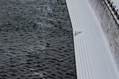 Pacificação do inverno do rio de Dnieper e do cais coberto de neve fotografia de stock royalty free