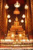Pacifico in tempio Immagine Stock