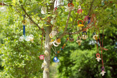 Pacifier tree. Tree with many baby pacifier stock images