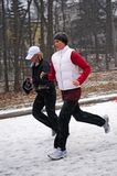 Pacing in the Snow Stock Photo