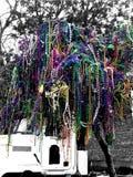 Paciorkowaty drzewo Zdjęcia Royalty Free
