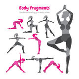 Pack of body parts. Body workout set. Woman doing fitness Stock Images