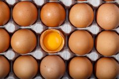 Pack of brown chicken eggs in cardboard container. One egg is broken. stock photography