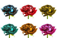 Pack of colored surreal wet rose flowers macro isolated Stock Images