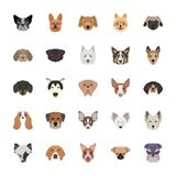 Breeds of Dogs Flat Icons stock illustration
