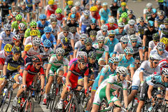 Pack of the cyclists Royalty Free Stock Image