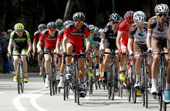 Pack of the cyclists ride during the Tour of Catalonia Stock Image