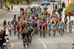 Pack of the cyclists ride during the Tour of Catalonia Royalty Free Stock Photos