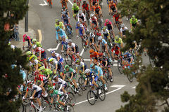 Pack of the cyclists ride during the Tour of Catalonia Royalty Free Stock Images