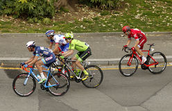Pack of the cyclists ride during the Tour of Catalonia Stock Images