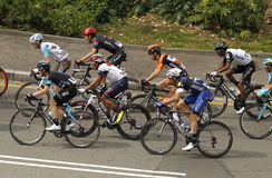Pack of the cyclists ride during the Tour of Catalonia Royalty Free Stock Photo