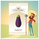 Pack of eggplant seeds Stock Photography