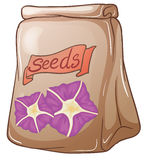 A pack of flower seeds. Illustration of a pack of flower seeds on a white background Stock Image