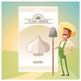 Pack of garlic seeds icon Royalty Free Stock Photography