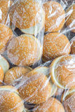 A pack of hamburger buns Royalty Free Stock Photos