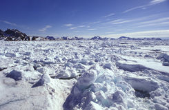 Pack ice Eastern Greenland Stock Photos