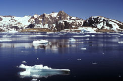 Pack ice Eastern Greenland Royalty Free Stock Photography