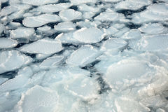 Pack ice Stock Images