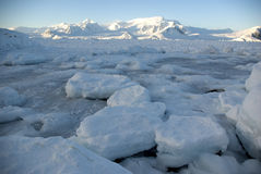 Pack ice in the Strait off the Antarctic Peninsula. Stock Image