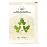 Pack of Parsley seeds icon Royalty Free Stock Image