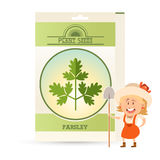 Pack of Parsley seeds icon Stock Photo