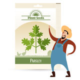 Pack of Parsley seeds icon Stock Photography