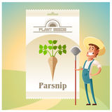 Pack of Parsnip seeds icon Royalty Free Stock Photography