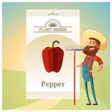 Pack of Pepper seeds icon Stock Image