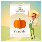 Pack of Pumpkin seeds Stock Images