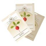 Pack of Radish seeds icon Stock Image