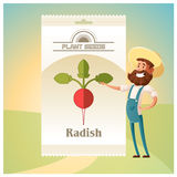 Pack of Radish seeds icon Stock Image