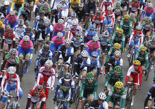 Pack of riders during Cycling race Stock Images