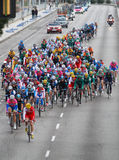 Pack of riders on road Royalty Free Stock Photo