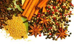 Pack of several spices Royalty Free Stock Photos