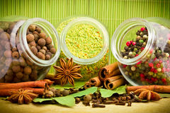 Pack of several spices and herbs Royalty Free Stock Images