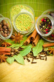 Pack of several spices and herbs Stock Images