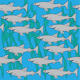 Pack of sharks. Seamless tracery of the sharks and seaweed Royalty Free Stock Images