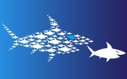 Pack of sharks pursues big shark. Pack of sharks pursues big shark Royalty Free Stock Image