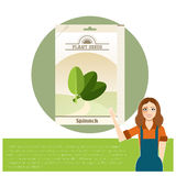 Pack of Spinach seeds icon. Vector image of the Pack of Spinach seeds icon Stock Photography