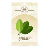 Pack of Spinach seeds icon Stock Photo