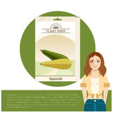 Pack of Squash seeds icon Royalty Free Stock Photo