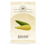 Pack of Squash seeds icon Royalty Free Stock Image