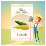 Pack of Squash seeds icon Stock Photo