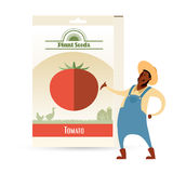 Pack of Tomato seeds. Vector image of the Pack of Tomato seeds Stock Photo